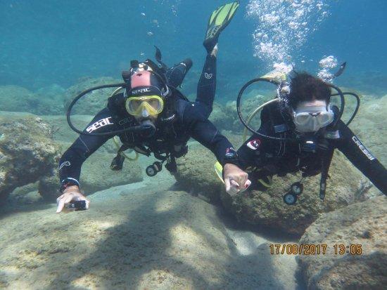FunDive : Diving Summer 2017