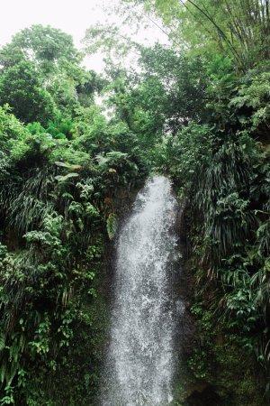 Son of Man Sea Tours: The gorgeous waterfall
