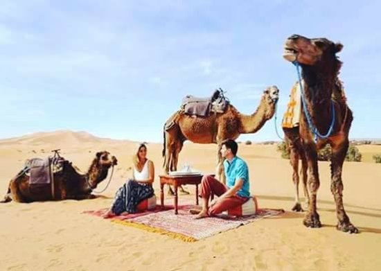 Morocco Camel Tours - Day Tours