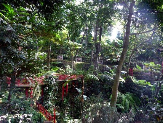 Jardin oriental obr zek za zen monte palace madeira for Jardin oriental