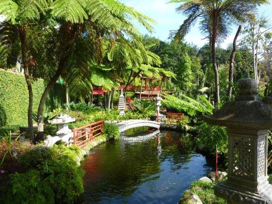 Jardin oriental billede af monte palace tropical garden for Jardin oriental
