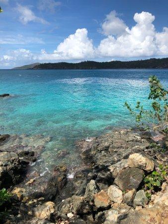 Coki Point Beach: photo3.jpg