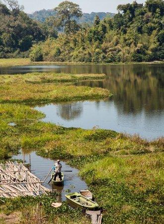 Cat Tien National Park, Vietnam: photo0.jpg