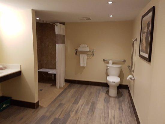 ออชาวา, แคนาดา: ADA Bathroom with Roll in Shower