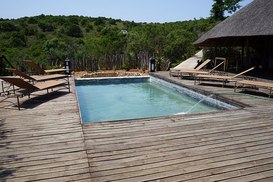 Bukela Game Lodge: Kleiner Pool