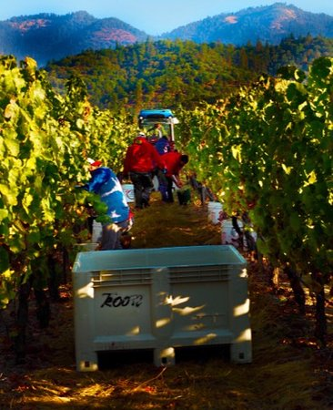 Grants Pass, Όρεγκον: Harvesting surrounded by the Siskiyou Mountains