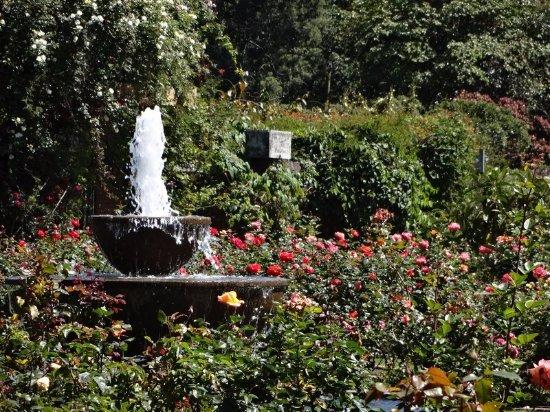 Jardin Botanico de Bogota Jose Celestino Mutis - Picture of Jardin ...