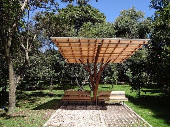 Jardin Botanico de Bogota Jose Celestino Mutis - Bild von Jardin ...