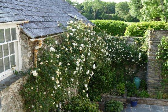 St Minver, UK: Trewornan Manor - ein Bilderbuch Herrenhaus aus dem 13. Jahrhundert