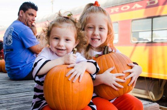 ซีดาร์พาร์ค, เท็กซัส: Pumpkin Express