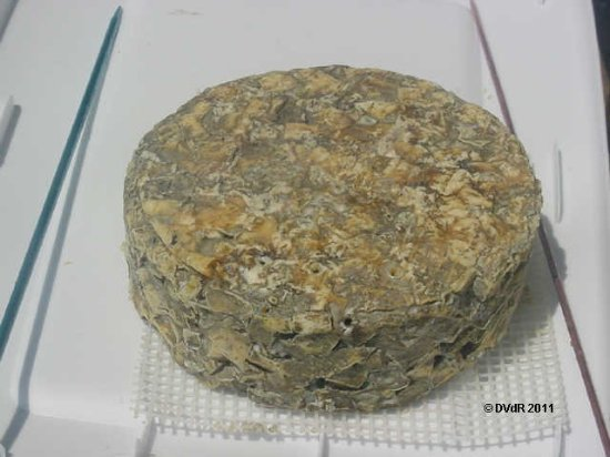 Sheffield, UK: gone off stilton they were selling at extortionate rates
