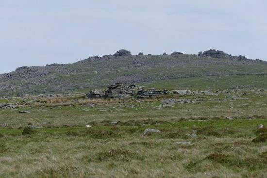 Buckland Monachorum, UK: Im Dartmoor