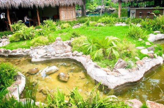 Rivas, Nicaragua: Koi creek