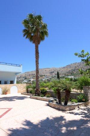Vlycha, Grecia: Κήπος