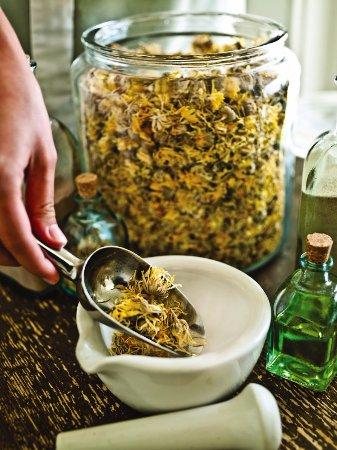 Saint Michaels, MD: Botanical Ingredients