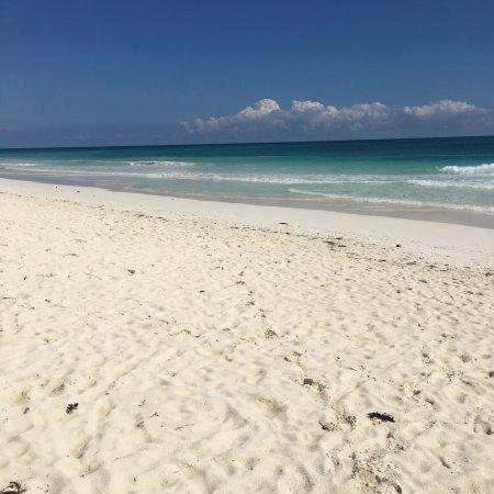 The White Isle meets the Riviera Maya