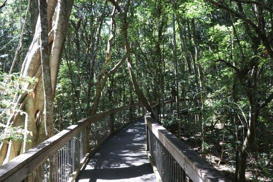 Port Macquarie, Australia: The Board Walk