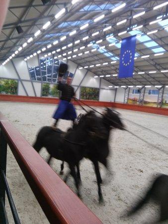 Lazar Equestrian Park: CAM01971_large.jpg