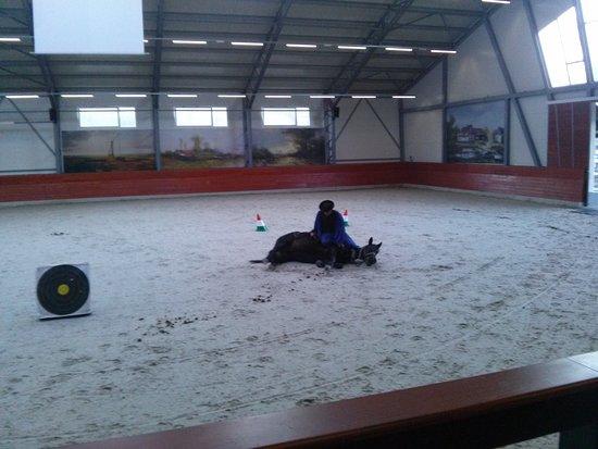 Lazar Equestrian Park: CAM01969_large.jpg