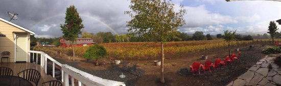 Forestville, CA: Enriquez Estate during fall.