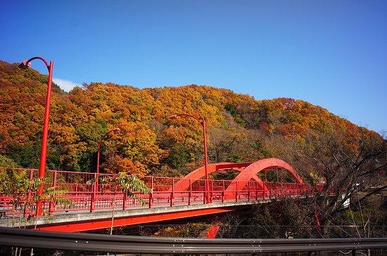 Midori, Japan: 11月末の紅葉です