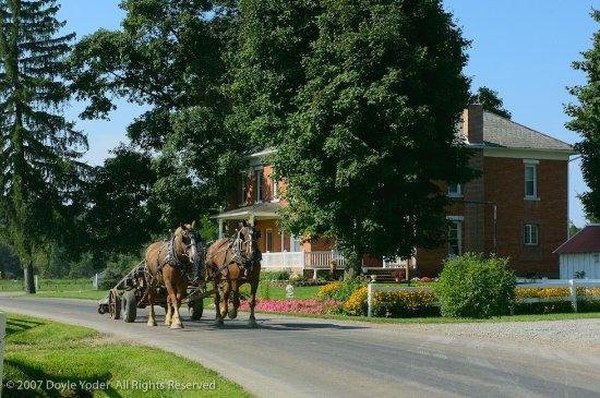 berlin cottages amish country lodging b b reviews ohio rh tripadvisor com