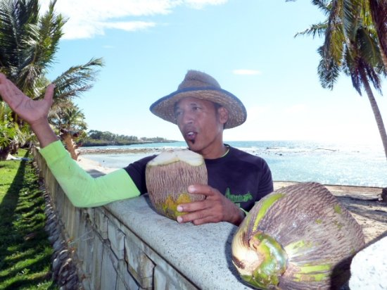 Crazy Wheels: Miguel and the Coconut water