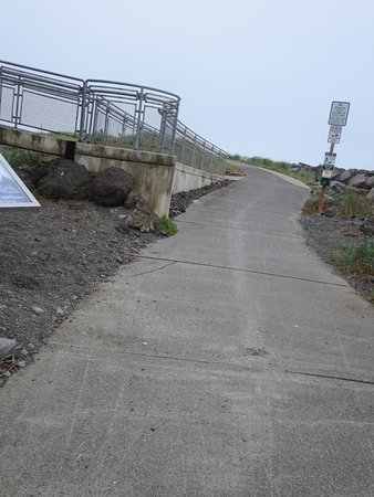 Westport, Waszyngton: The path beside the viewing tower is part of the lighthouse trail system