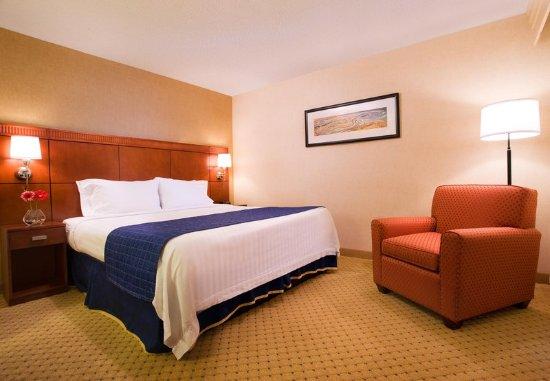 Novato, CA: King Guest Room