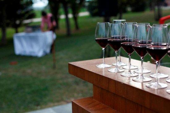 Gualta, Spain: Wine