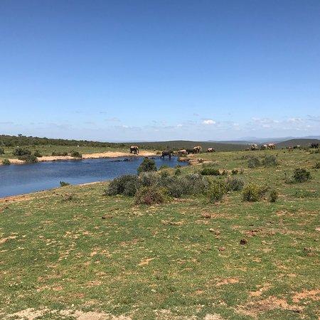 Западно-Капская провинция, Южная Африка: photo0.jpg