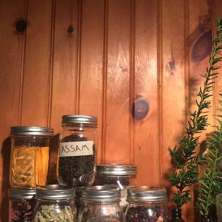 Mount Tremper, Estado de Nueva York: The Pines rocks!