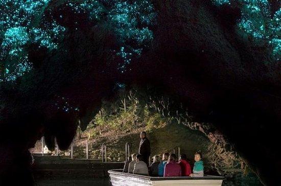 Cavernas de Waitomo e Kiwi House