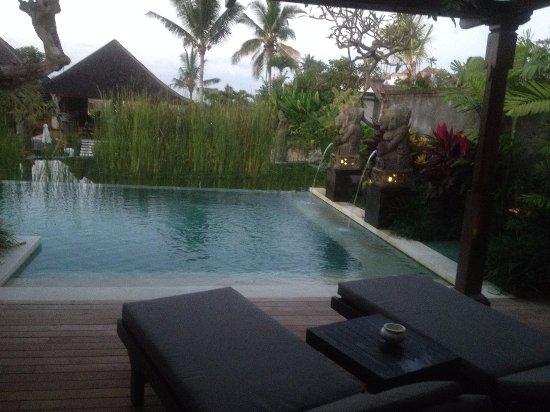 Morning View By The Pool Bild Von Visesa Ubud Resort Ubud
