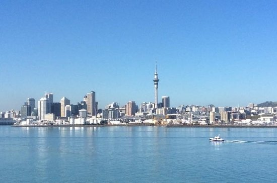 Auckland City and Maori Culture Tour (private vehicle & guide): Auckland City and Maori Culture Tour