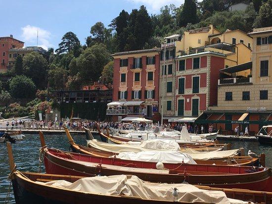 Area Marina Protetta Portofino: Portofino Marina