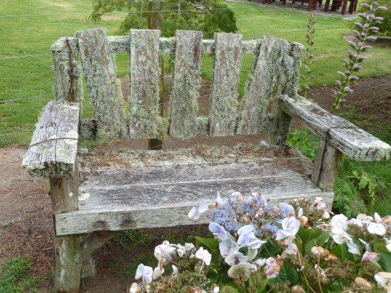Taumarunui, Neuseeland: bench in the garden
