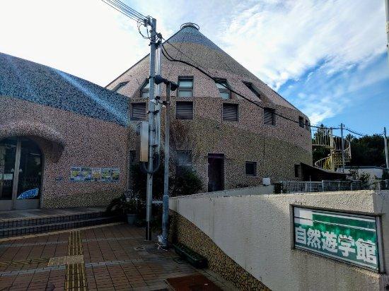 Kaizuka, Japonya: IMG_20171201_140335_large.jpg