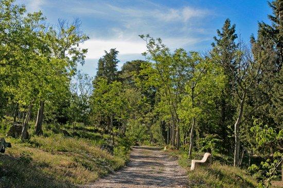 Parque Periurbano de Castala