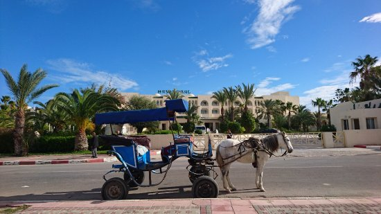 Hasdrubal Thalassa & Spa Djerba : Vue côté entrée.