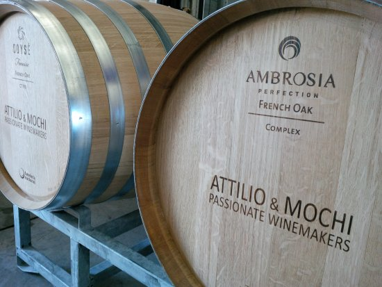 Attilio & Mochi Passionate Winemakers