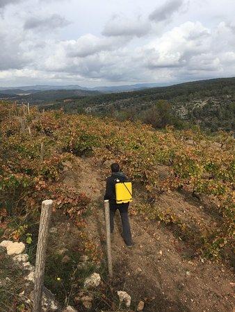 Capcanes, Hiszpania: Otoño - el tratamiento biodinámico de silica