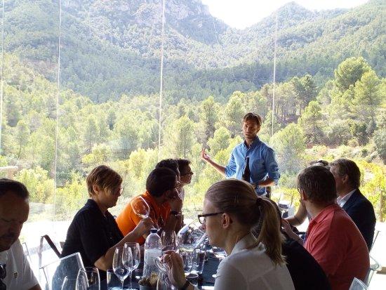 Capcanes, Hiszpania: Explicando los vinos...