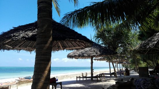 Uroa Bay Beach Resort: IMG_20171128_141323_large.jpg