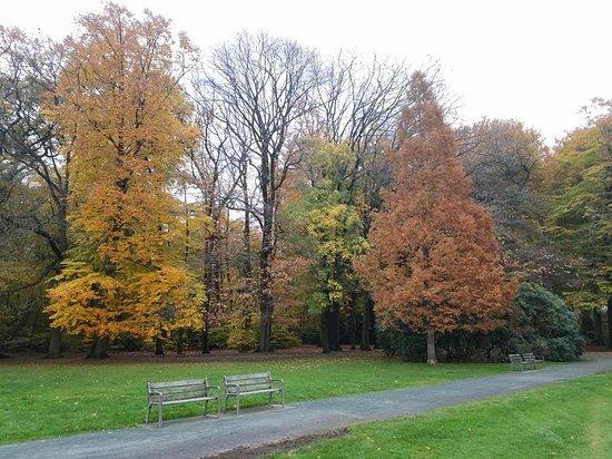Te Boelaerpark