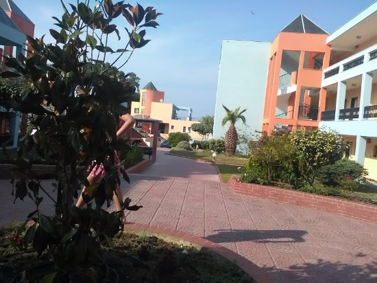 Atrium Hotel Pefkohori Tripadvisor