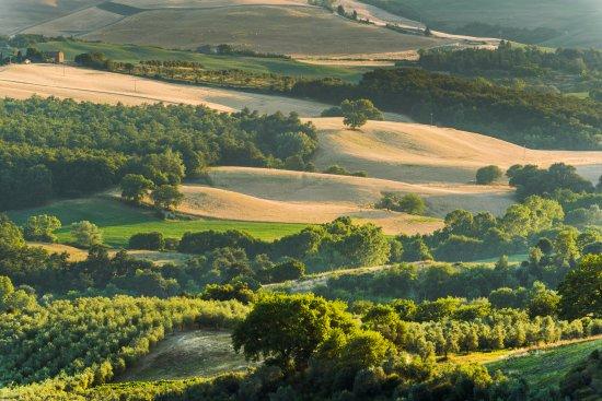 Locanda di CasalMustia 사진