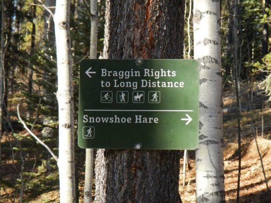 Bragg Creek, Canada: Well signed!