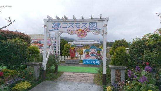 Kyoto Tamba, Kameoka Yumecosmos Garden