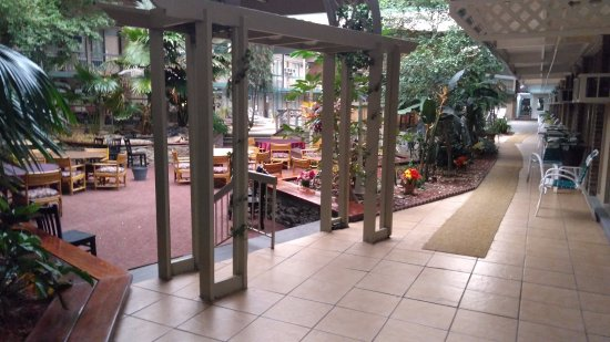 Pocono Plaza Inn: Courtyard in Atrium